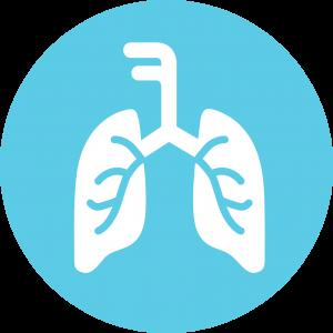 Panel Respirator
